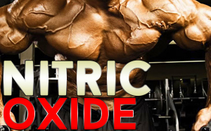 Nitric-Oxide-Reviews