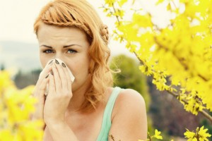 how-to-hide-allergies